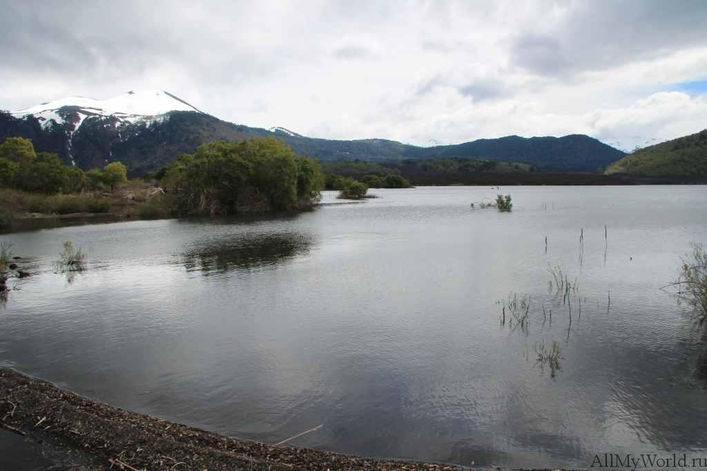 Чили парк Конгильо фото