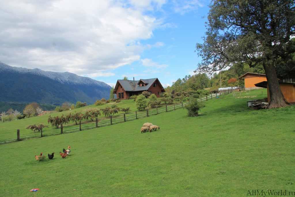 Чили озеро Ранко фото