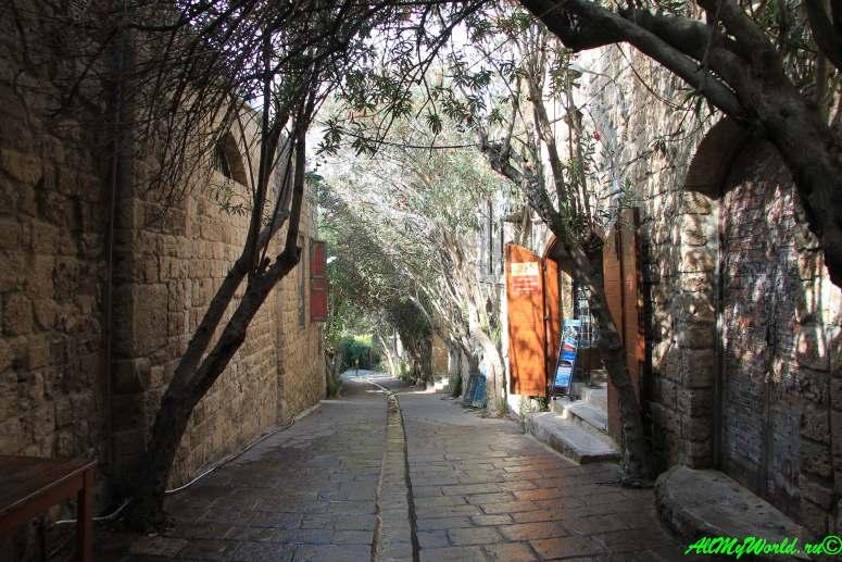 Ливан Библос фото
