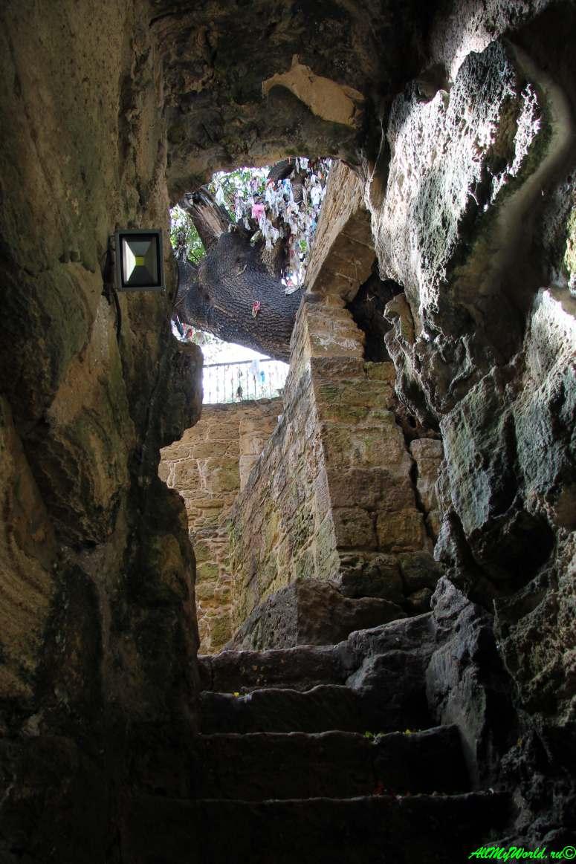Кипр Пафос достопримечательности фото катакомбы