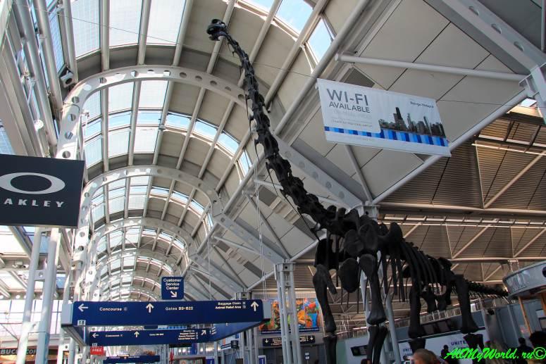 США, город Чикаго: достопримечательности и фото - международный аэропорт О'Хара (O'Hare International Airport)