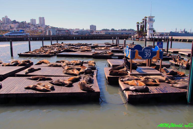 США, город Сан-Франциско - достопримечательности и фото - Фишерманс-Уорф Fishermans Wharf