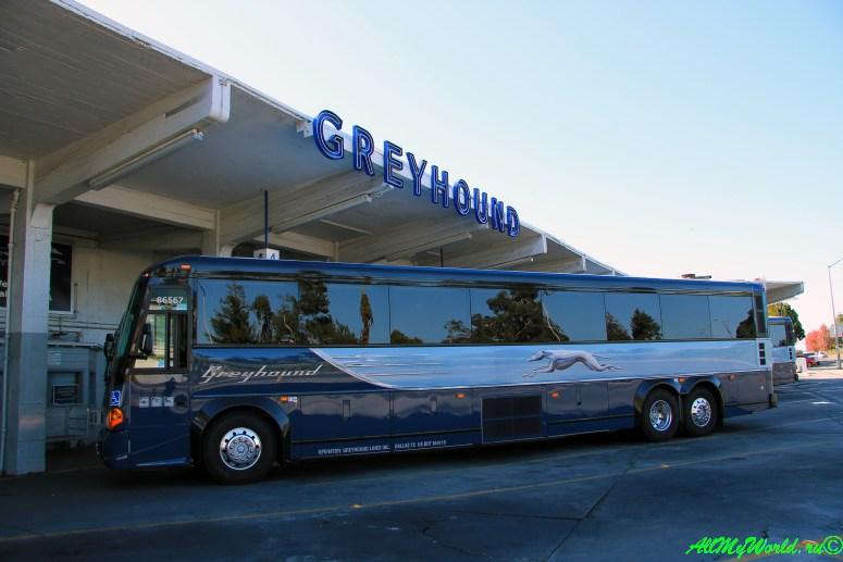 США, город Сан-Франциско - достопримечательности и фото - автобусный терминал Grayhound