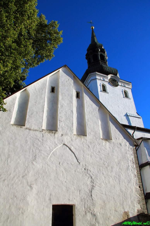 Достопримечательности старого Таллина: Домский собор