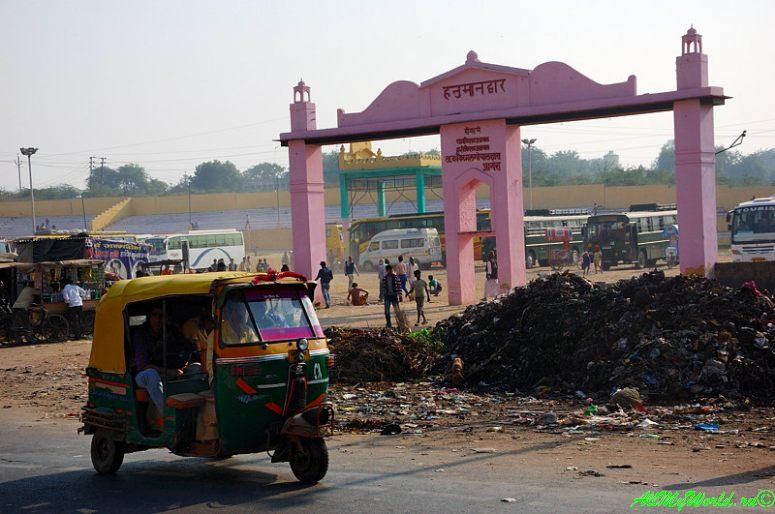 Отзыв об Индии или два месяца на помойке