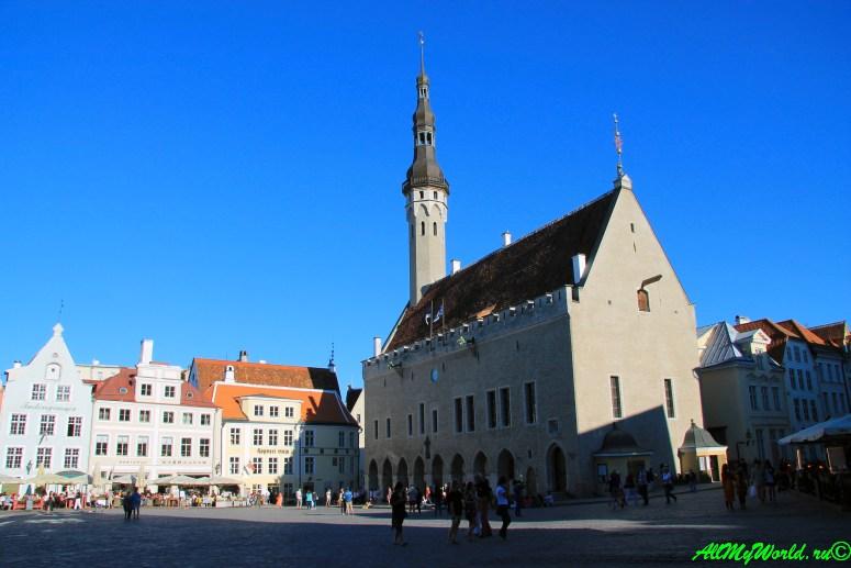 Достопримечательности Таллина: что посмотреть в Старом городе - Таллинская Ратуша