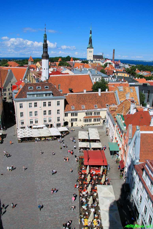 Достопримечательности Таллина: что посмотреть в Старом городе Таллинская Ратуша