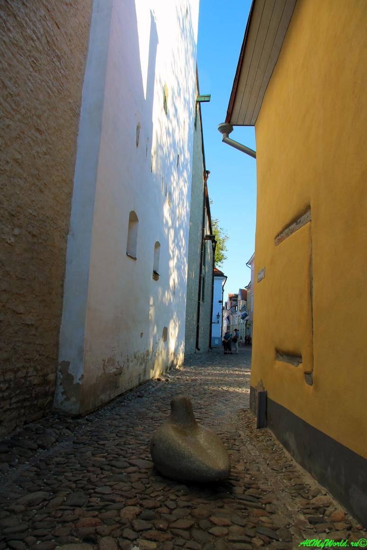 tallin-estoniya-foto-obshhaya-informaciya-o-gorode3