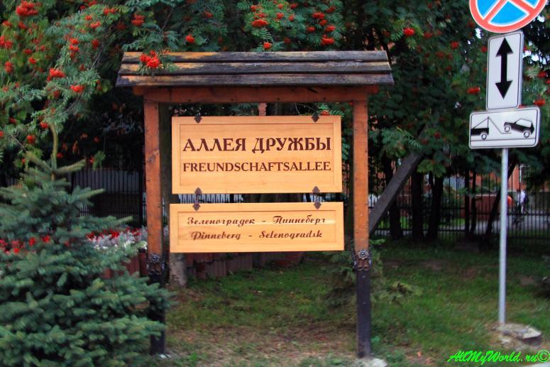 Калининградская область: 11 достопримечательностей города Зеленоградск - Аллея Дружбы