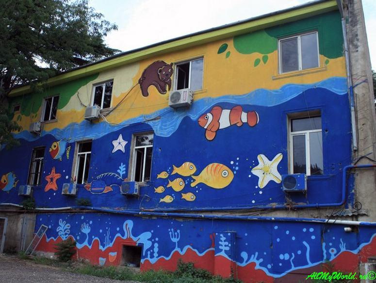 Районы Тбилиси: Вера зоопарк Тбилиси