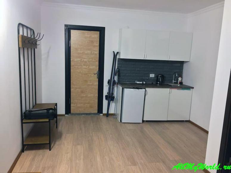 Лучшие апартаменты и квартиры Гудаури - Guga's Private Apartment in Mgzavrebi