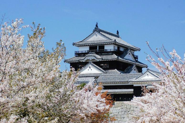 Путешествие в Японию самостоятельно - Мацуяма