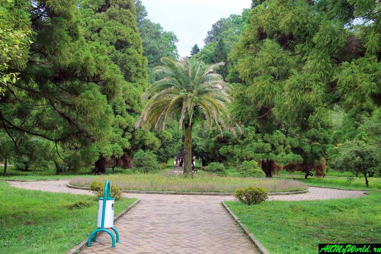 Достопримечательности Батуми: Ботанический сад