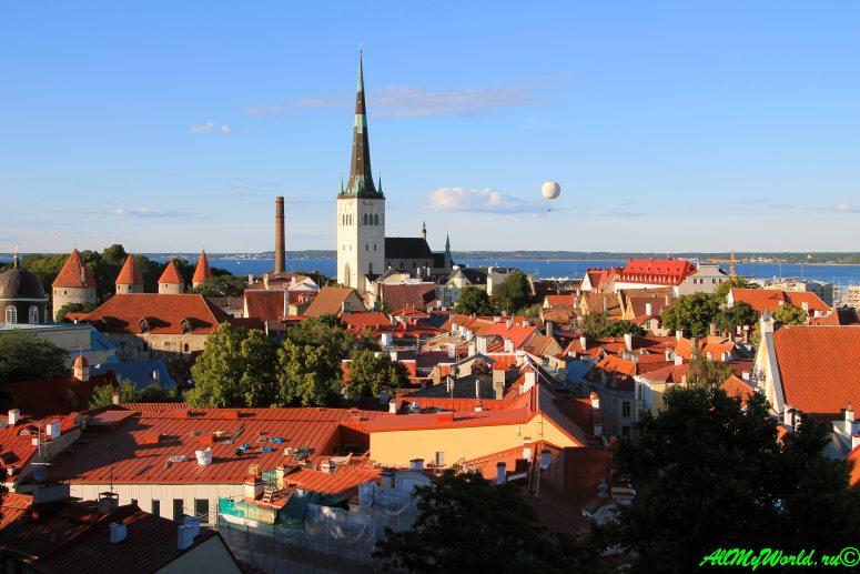 Достопримечательности Таллина - смотровая площадка Kohtuotsa
