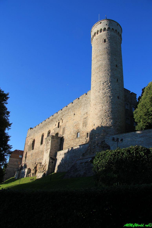 """Достопримечательности Таллина - замок Тоомпеа и башня """"Длинный Герман"""""""