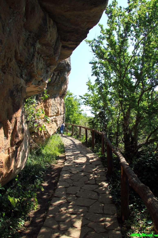 Грузия, заповедник Сатаплия: динозавры, пещера и мост над пропастью