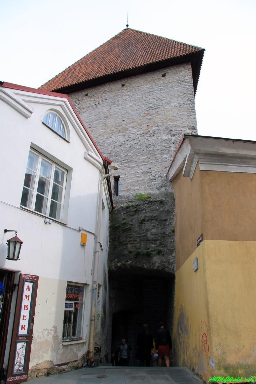 Старый Таллин: улицы Pikk Jalg и Lühike jalg