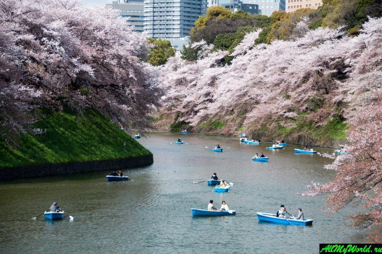 Достопримечательности Токио: Чидоригафучи