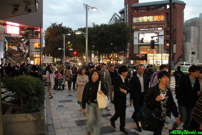 Достопримечательности Токио: улица Омотэсандо