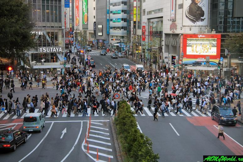 Достопримечательности Токио: перекресток Сибуя
