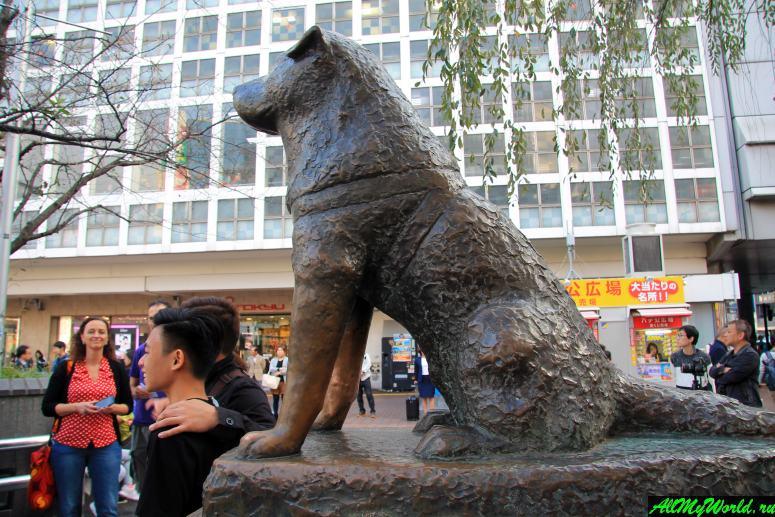 Достопримечательности Токио: памятник Хатико