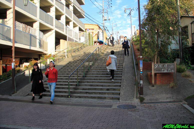 Достопримечательности Токио: Янака-Гиндза