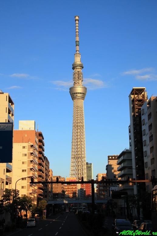 Достопримечательности Токио: башня Tokyo Skytree