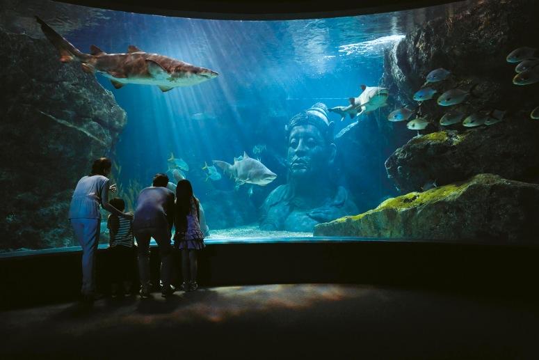 Достопримечательности Бангкока - Океанариум Siam Ocean World