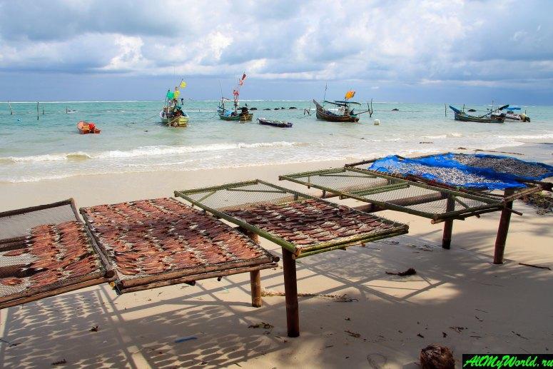 Достопримечательности острова Самуи: Мусульманская деревня Хуа Танон