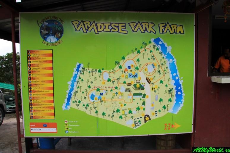 Достопримечательности острова Самуи: контактный зоопарк Paradise Park