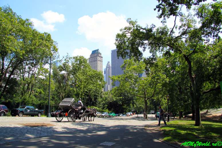 Нью-Йорк: Центральный парк (Central Park)