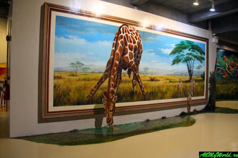 """Достопримечательности Паттайи - Арт-галерея 3-D картин Art in Paradise (""""Искусство в раю"""")"""