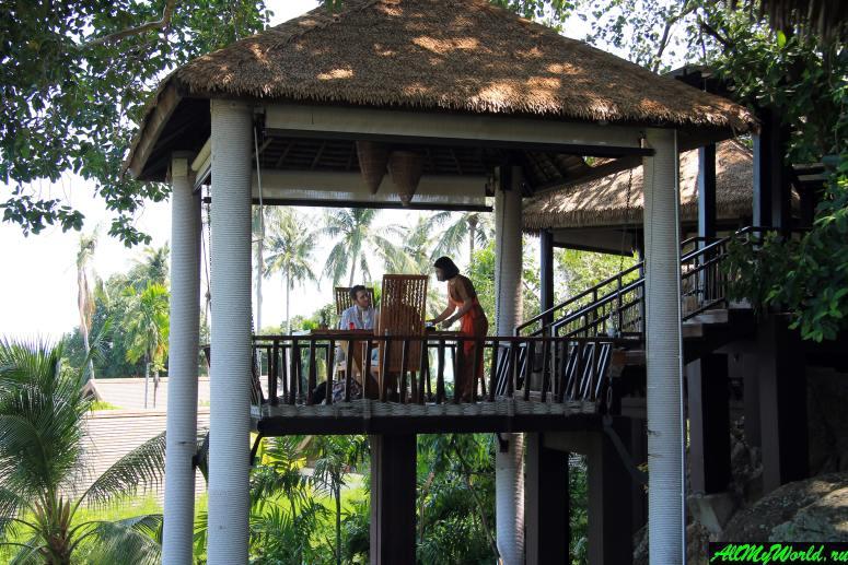 Где поесть на Самуи: Ресторан Tree Tops Sky Dining & Bar