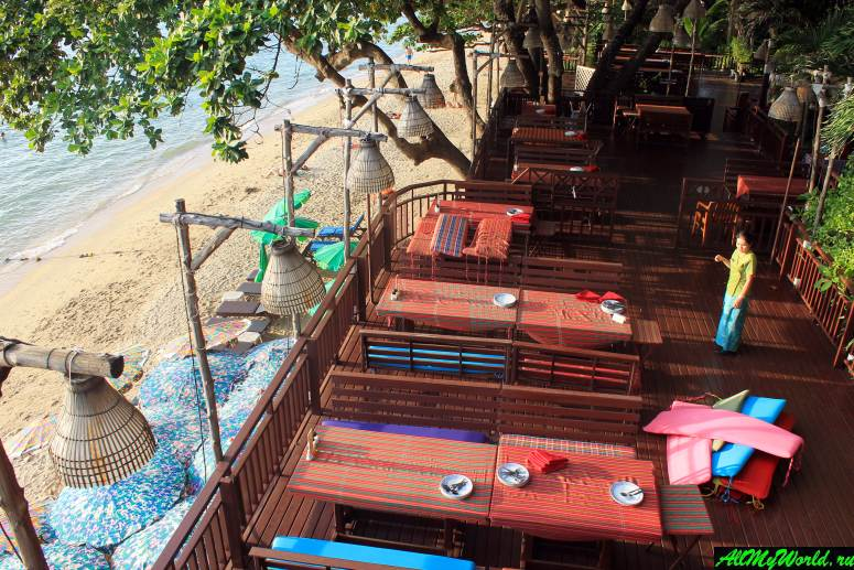 Где поесть в Паттайе - Ресторан Cabbages &Condoms