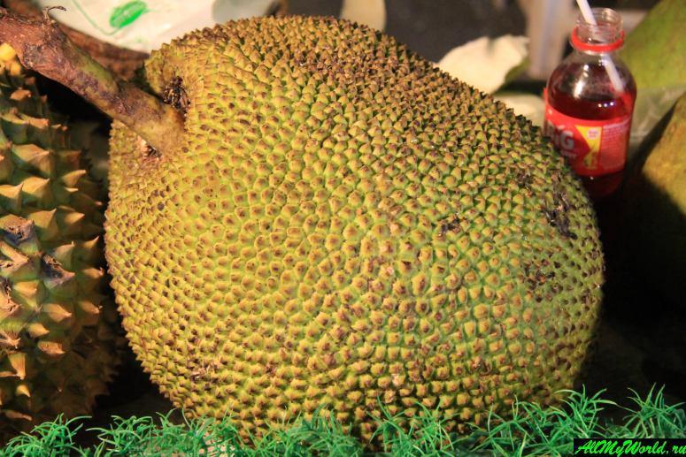 Тайские фрукты - Джекфрукт (Jack Fruit)