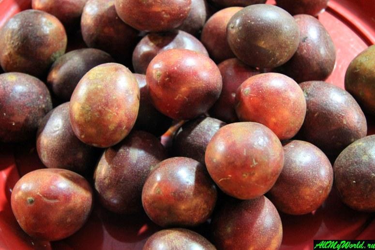 Тайские фрукты - Маракуйя (passion fruit)