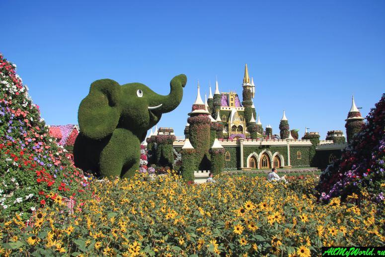 Дубай достопримечательности: Парк цветов Dubai Miracle Garden