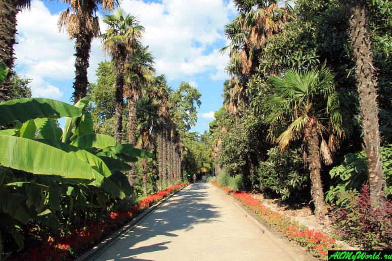 Достопримечательности Крыма - Никитский ботанический сад
