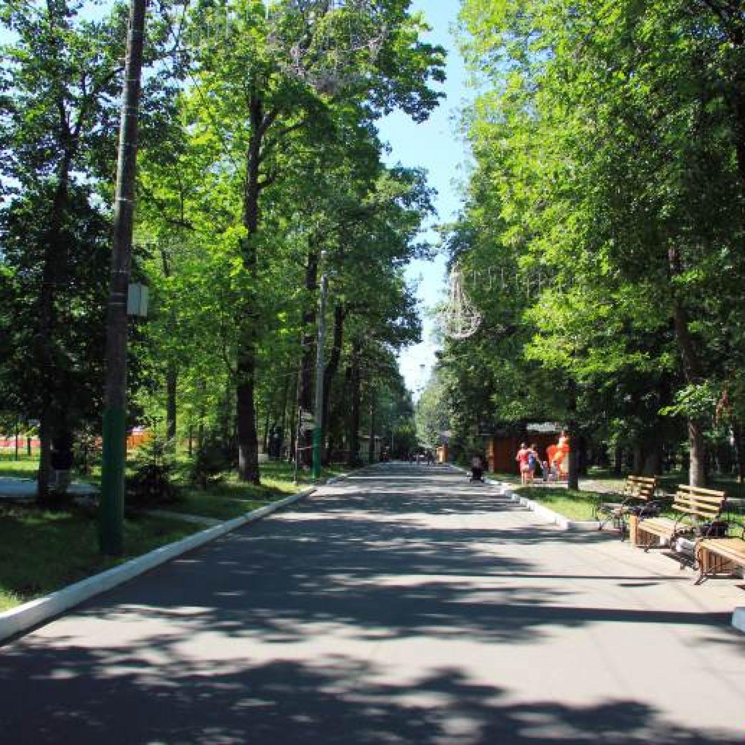Достопримечательности Чебоксар: Лакреевский лес