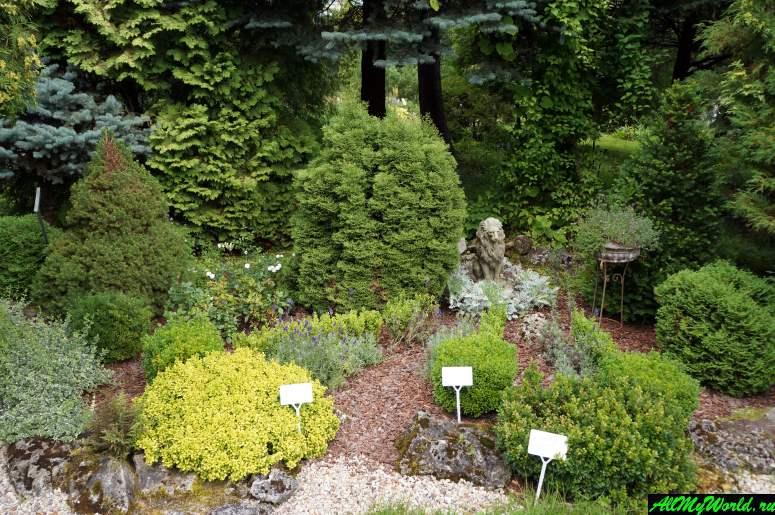 Достопримечательности Твери: Ботанический сад Тверского Государственного Университета