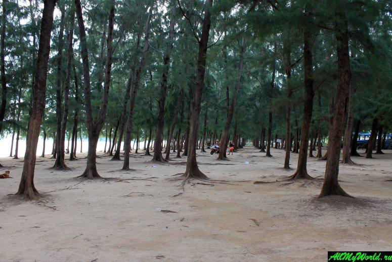 Паттайя, пляж Нанг Ронг