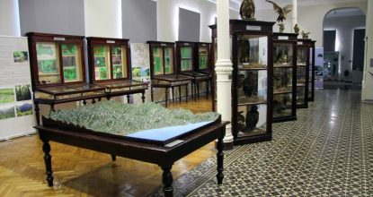 Музей Аджарии (Батумский краеведческий музей) — фотопост