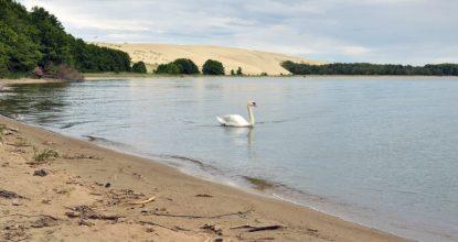 Куршская коса: озеро Лебедь